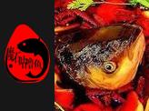 魔石咕噜鱼加盟