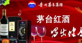 葡萄酒加盟哪个较好茅台葡萄酒开店好项目