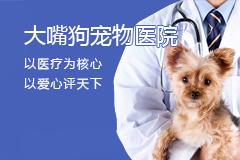大嘴狗宠物医院
